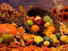 Happy Thanksgiving from Quarter LifeConversations!